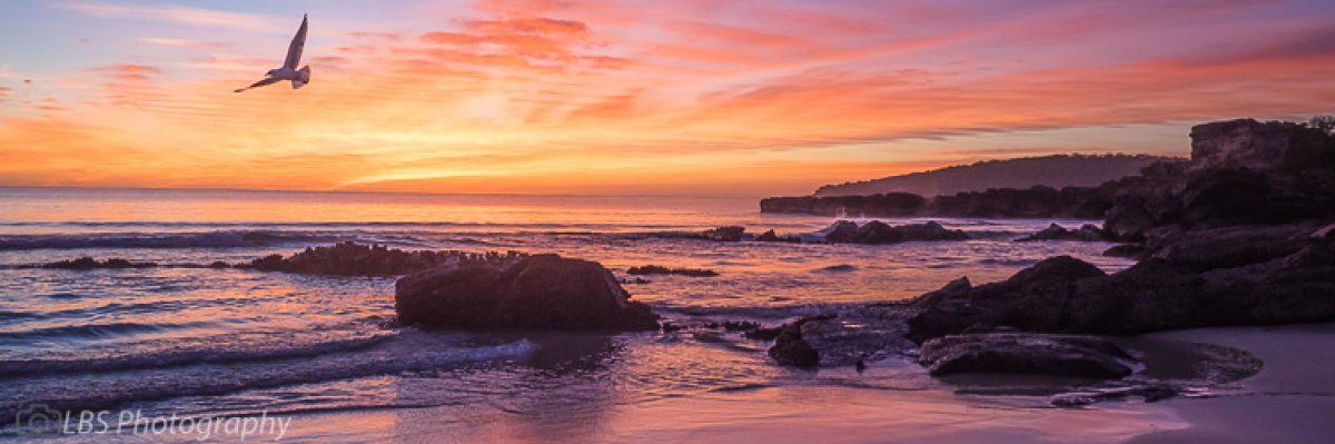 Sapphire Coast Shots